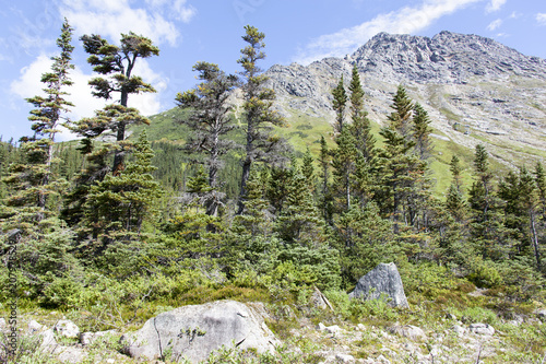 Canvas Blauwe hemel Alaska's Skagway Trails