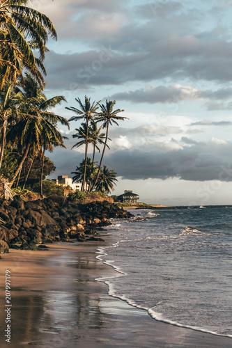 Plexiglas Tropical strand Maui Beach Sunset