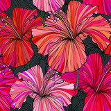 Beautiful seamless floral jungle pattern background. Tropical flowers bright color background. Hibiscus flower realistic vector repeatable design. - 208007376
