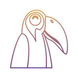 Toucan bird icon over white background, vector illustration - 208009176