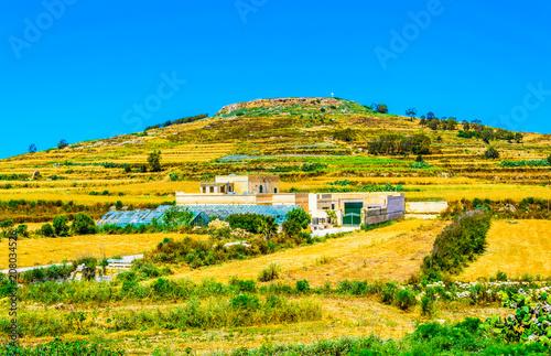 Fotobehang Oranje Countryside on Gozo, Malta