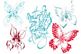 Set of  vector butterflies. Hand drawing silhouettes with calligraphy phrase