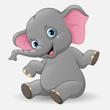 Cute Baby Elephant Sitting    Sticker