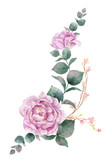 Watercolor vector hand painting illustration of peony flowers and green leaves. - 208068195