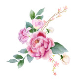 Watercolor vector hand painting illustration of peony flowers and green leaves. - 208068323