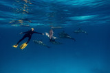 Girl freediver together with dolphins in Red sea - 208070372