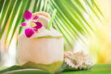 Tropical exotic fresh green coconut water drink near palm with orchid flower