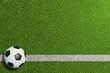 Leinwanddruck Bild - Fußball auf Linie im grünen Rasen