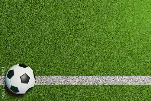Leinwanddruck Bild Fußball auf Linie im grünen Rasen