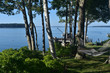 Summer Day on Bustins Island in Maine