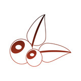 Delicious olives nature vector illustration graphic design