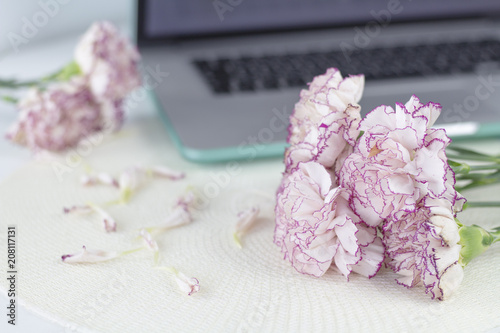White angel on desk. Beautiful pink flowers on white desk. - 208117131