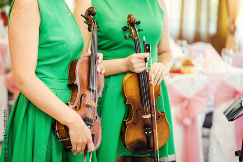 Girl's hand on the strings of a violin - 208121172