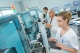 female researcher analyzing data - 208131146