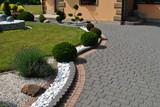 Ogród przy domu - 208139552