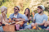 Friends having fun on picnic - 208139571