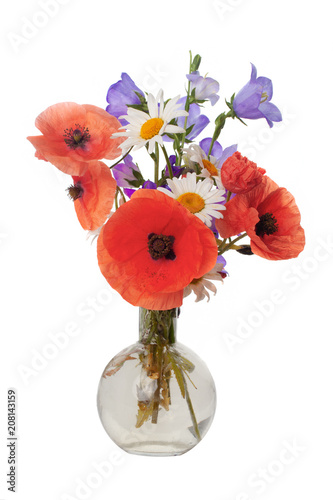 Leinwanddruck Bild Bouquet of beautiful flowers Chamomiles wheat and poppies isolated without shadow
