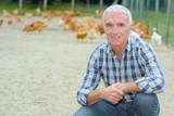 poultry farmer in the field - 208147945