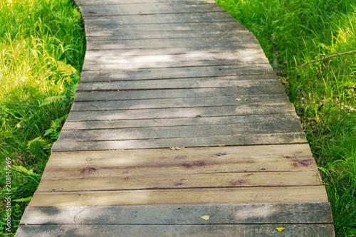 Aluminium Groene Wooden bridge in the forest, tall grass overgrown around the bridge