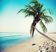 Leinwanddruck Bild - Tropical beach with coconut tree and clean sea