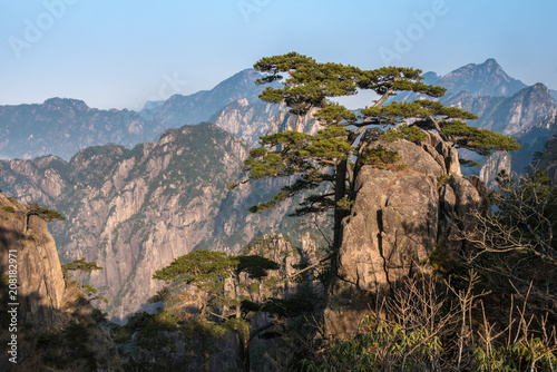 Fotobehang Cappuccino View point of Stone monkey on the top of mountain, Huangshan mountain Cloud Sea Scenery, East China`s Anhui Province.