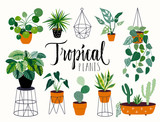 Tropical house plants collection with different elements, isolated on white and hand lettering - 208196354