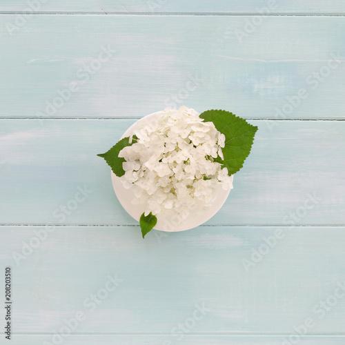 Fotobehang Hydrangea Hydrangea in coffee cup