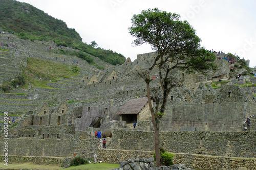 Canvas Khaki Terrasses du Machu Picchu -3