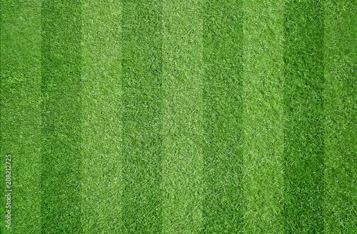 Fototapeta Fußball / Sport / Rasen