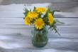 dandelions in a vase - 208227364