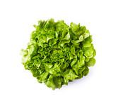 Fresh organic lettuce on white background; flat lay - 208236316