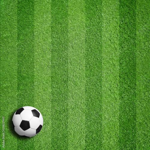 Fototapeta Fußball auf Rasen