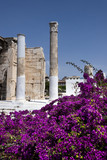 Greece, Athens, near Monastiraki: Ancient ruin columns at the entrance of famous Hadrian's Library in the city center of the Greek capital with colorful magenta plant and blue sky - concept history. - 208247124