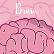 Brain and intelligence concept