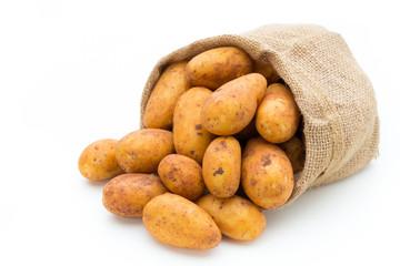 A bio russet potato isolated white background.