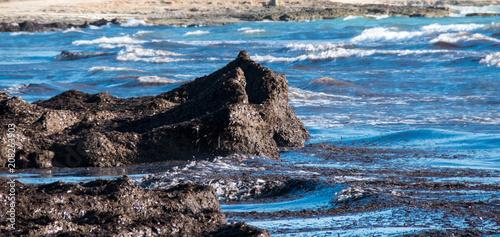 Fotobehang Zwart On the beach 6