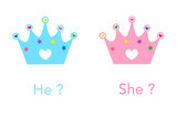 Crown. Baby gender reveal party. Pink and blue crown - 208276721