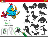 educational shadows game with birds - 208349167