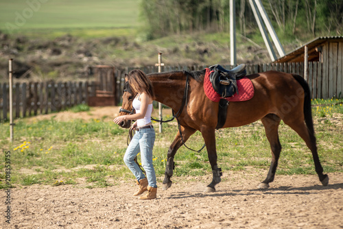 Fotobehang Paarden the girl leads the horse to the pasture