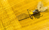 Aerial view of combine harvester. Harvest of rapeseed field. Industrial background on agricultural theme. Biofuel production from above. Agriculture and environment in European Union.  - 208375502