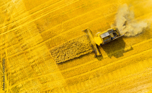 Leinwanddruck Bild Aerial view of combine harvester. Harvest of rapeseed field. Industrial background on agricultural theme. Biofuel production from above. Agriculture and environment in European Union.