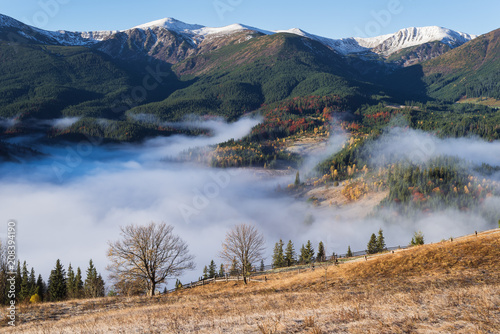 Autumn landscape with morning mist in the mountains