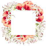 Card with Red and White Flowers - 208423599