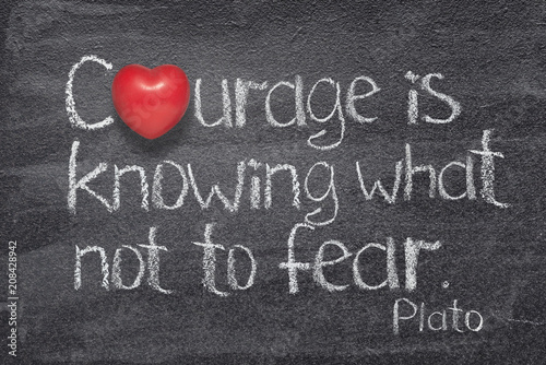 courage not fear heart
