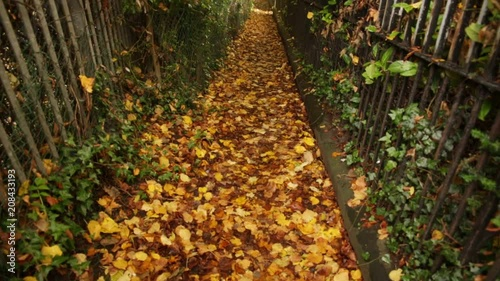 Romantic Alley in the autumn - tilt