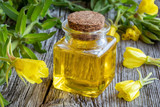 A bottle of evening primrose oil with fresh evening primrose plant - 208435119