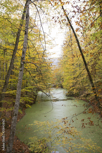 Aluminium Herfst Lake and forest nature view. Autumn and forest view camping outdoors. seven lakes in Turkey. Lush greenery reflection in water surface of primeval forest lake
