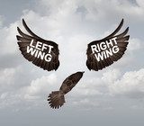 Right And Left Wing Political Problem - 208454152
