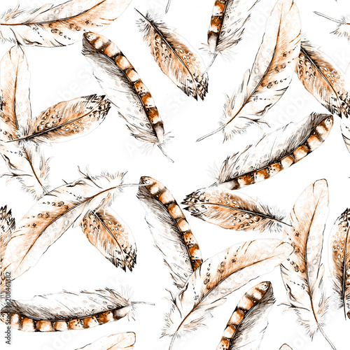 Seamless texture with brown bird feathers. On a white background. - 208461382