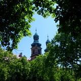 Widok na wieżę klasztoru w zespole klasztorny-pałacowym w Lubiążu założonym przez Cystersów - wieża widziana z pobliskich ogrodów przez drzewa - 208461721